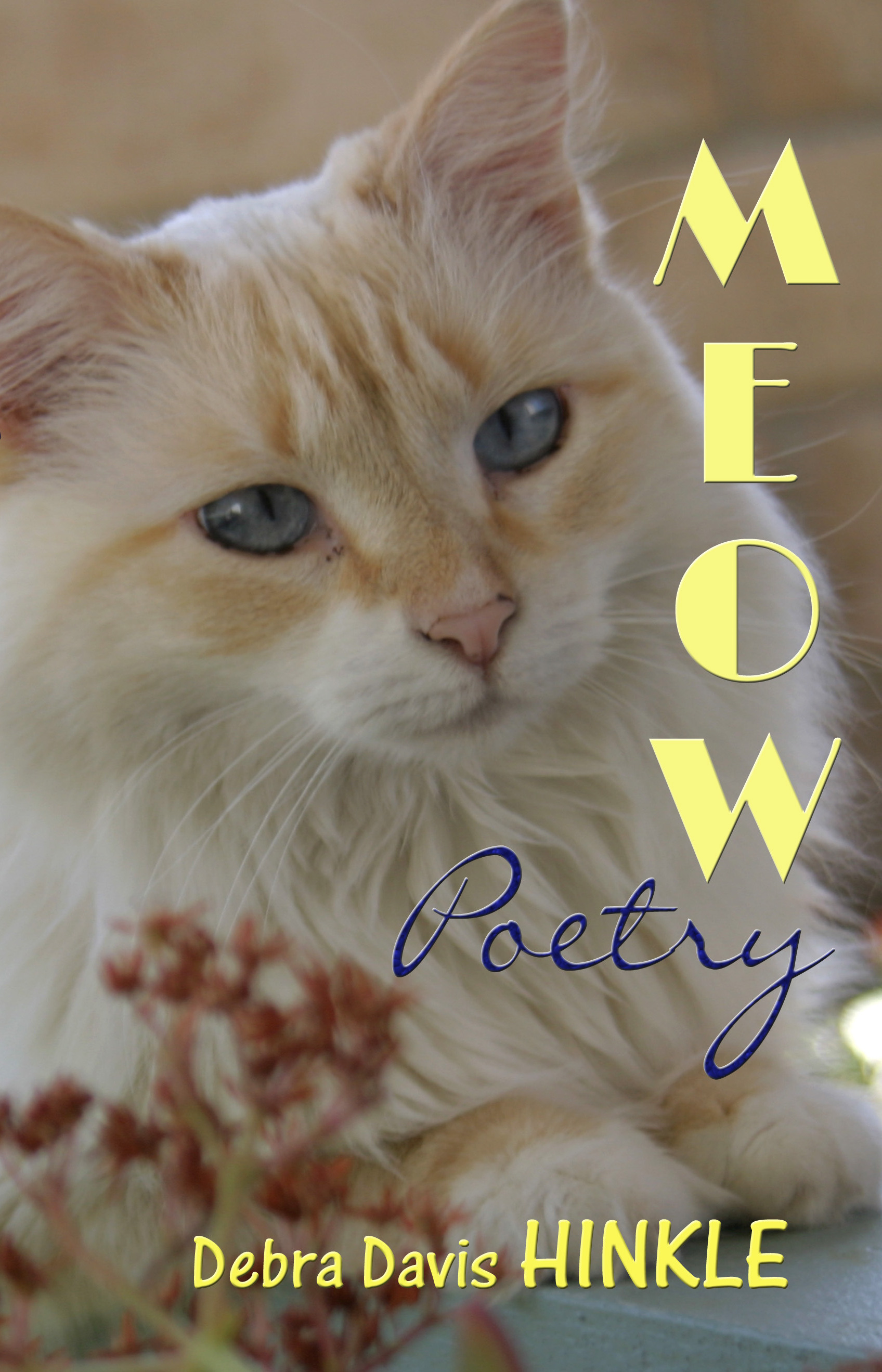 Front Cover Meow Poetry