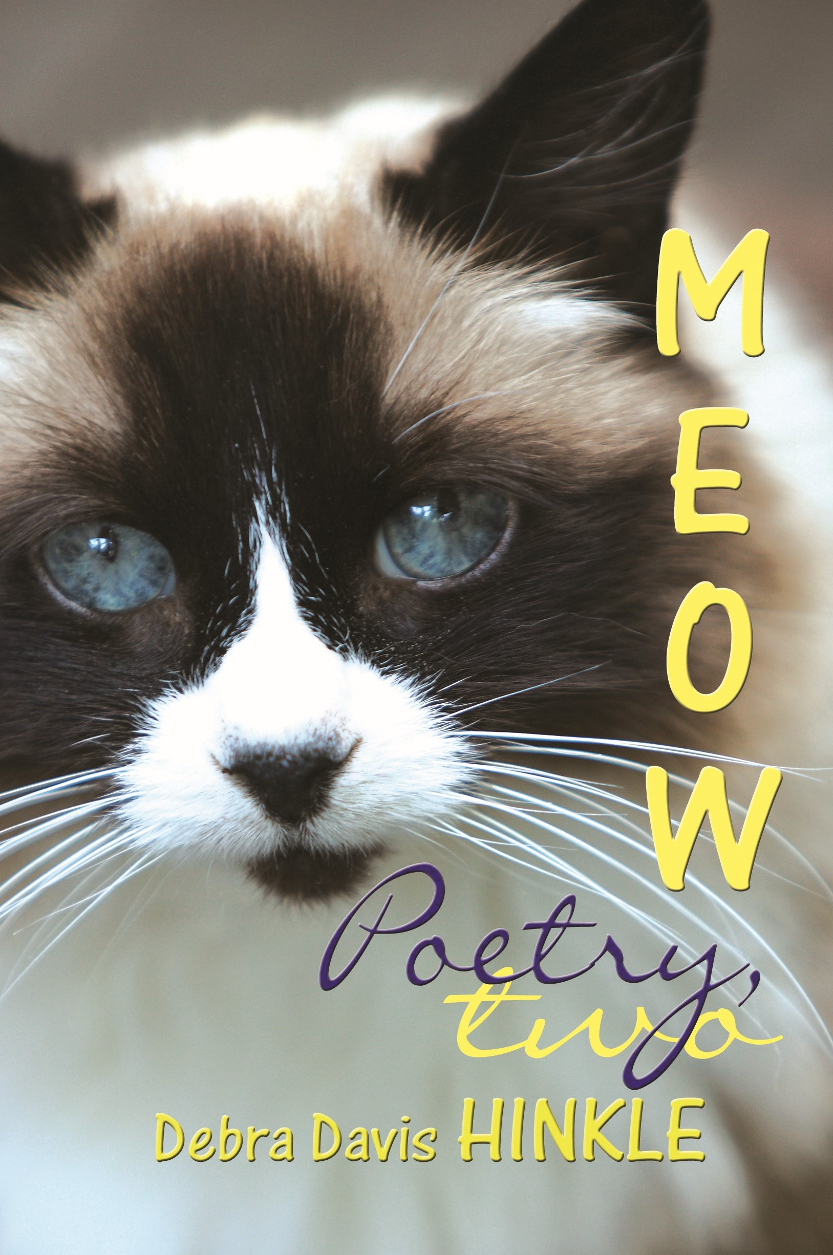 Meow Poetry 2
